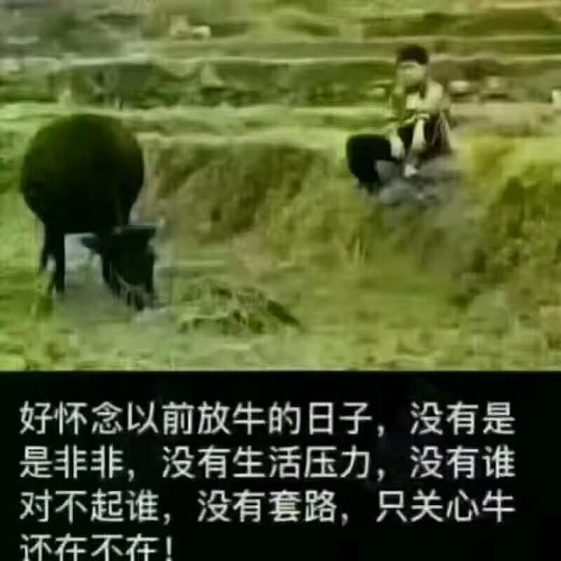 广东省广州市花都到广东省深圳市福田物流货源信息