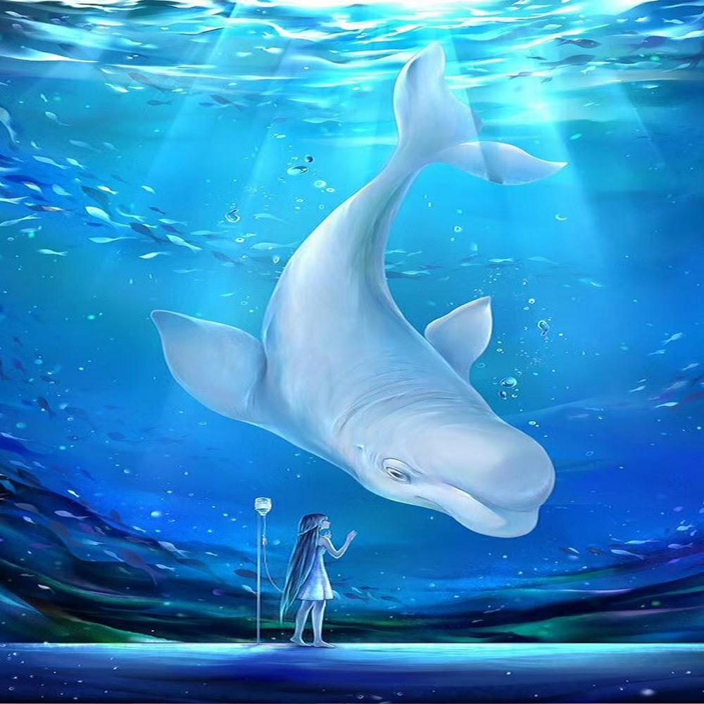 壁纸 海底 海底世界 海洋馆 水族馆 1000_1000